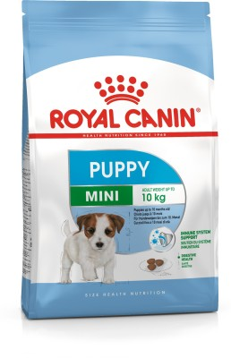 Royal Canin Mini Junior 4 kg Dry Dog Food