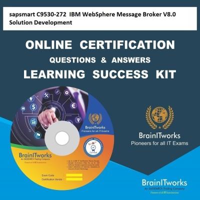 sapsmart C9530-272 IBM WebSphere Message Broker V8.0 Solution Development Online Certification Learning Made Easy(DVD)