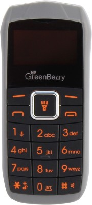 GreenBerry Nano(Grey)