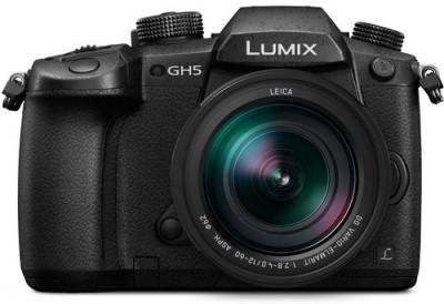 Panasonic Lumix DC-GH5LGA Mirrorless Camera Body with 12-60 mm Lens(Black)