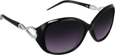 Poloport Wayfarer Sunglasses(Violet)
