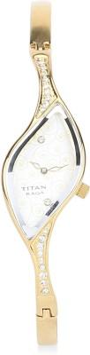 Titan Raga NE9710YM01J Analog Watch (NE9710YM01J)