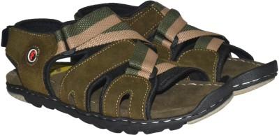 Strive Men Olive Sandals at flipkart