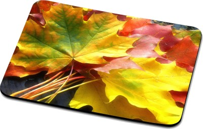 RADANYA Nature Mouse Pad 32211 Mousepad(Multicolor)