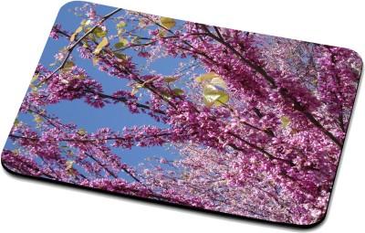 RADANYA Nature Mouse Pad RNPD49290 Mousepad(Multicolor)