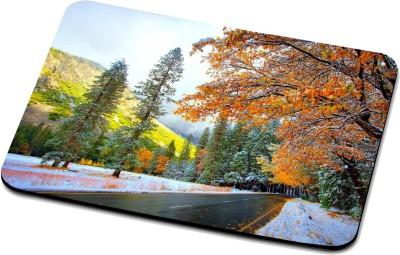 RADANYA Nature Mouse Pad RPD35308 Mousepad(Multicolor)
