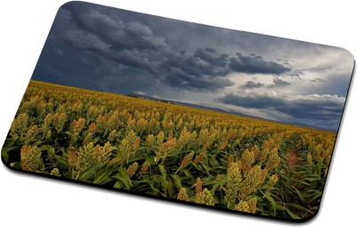 RADANYA Nature Mouse Pad RPD37021 Mousepad(Multicolor)