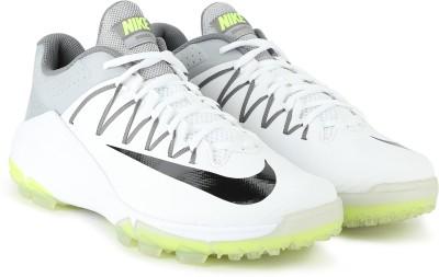 Nike DOMAIN 2 SS 19 Cricket Shoe For Men(White, Grey) 1