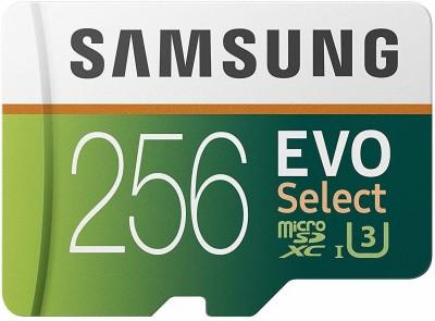 SAMSUNG EVO 256 GB MicroSDXC Class 10 100 MB/s Memory Card