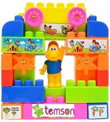 TEMSON Multi Colored Play and Learn Building Blocks Multicolor TEMSON Blocks   Building Sets