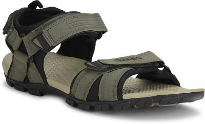 Sparx Sparx Men SS-481 Olive Black Floater Sandals Men Black, Grey Sports Sandals