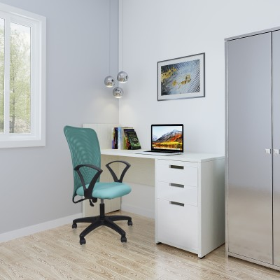 Flipkart Perfect Homes Fabric Office Arm Chair(Green)