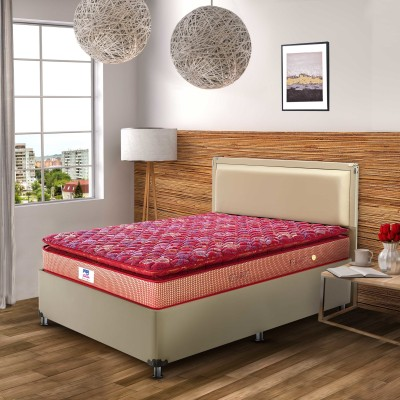 Peps Springkoil Pillow Top Maroon 6 inch Single Bonnell Spring Mattress