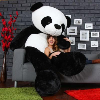 HONEYDEAL Teddy Bear with Neck Bow Premium Quality Soft Plush Fabric (Black Panda, 3 Feet) - 90 cm(Black, White)
