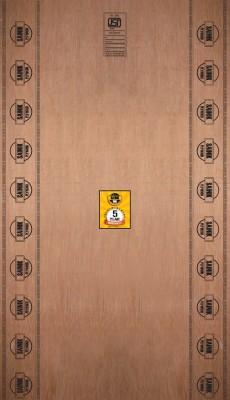 CenturyPly 8 MM Sainik MR 8X4 Plywood(Brown)