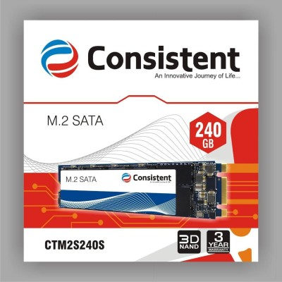 Consistent SATA3 240 GB Laptop, Desktop, All in One PC's Internal Solid State Drive (M2)