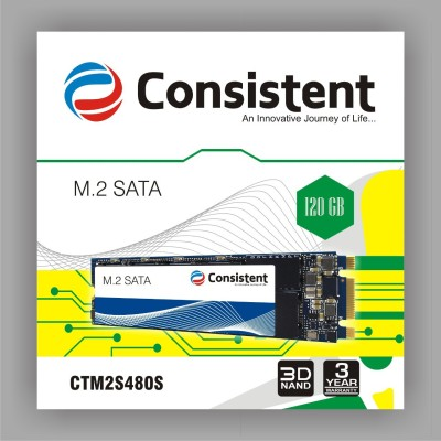 consistent SATA3 120 GB Laptop, Desktop, All in One PC's Internal Solid State Drive (SSD M2)