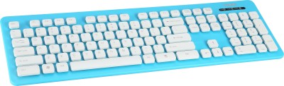 Havit KB332 Wired USB Laptop Keyboard(Blue)