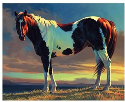 digital oil painting ABEUTY DIY Paint by Numbers for Adults Beginner - and Horse Animal 16x20 inches Number Painting Anti Stress Toys (No F