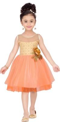 Aarika Birthday Special Pretty Dress Kids Costume Wear at flipkart