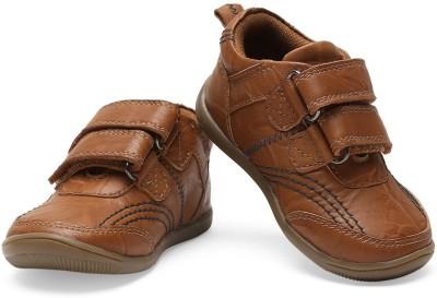 Teddy Toes Boys Velcro Moccasins(Gold) at flipkart