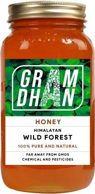 GRAMDHAN Organic Wild Forest Honey (250g)(250 g)