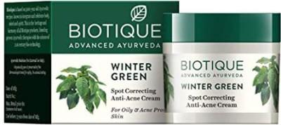 BIOTIQUE Bio Winter Green Spot Correcting Anti Acne Cream(15 g)