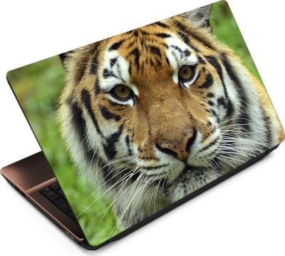 Anweshas Tiger T081 Vinyl Laptop Decal 15.6