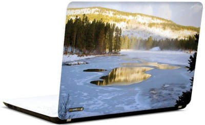 Pics And You Beautiful Dawn 14 3M/Avery Vinyl Laptop Decal 15.6