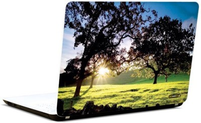 Pics And You Under The Trees 3M/Avery Vinyl Laptop Decal 15.6