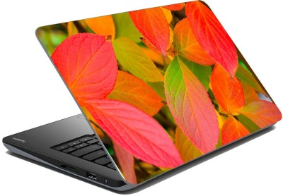 meSleep Nature LS-73-399 Vinyl Laptop Decal 15.6  available at flipkart for Rs.199