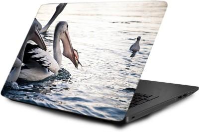 Printclub Laptop Skin decal 15.6 inch- Laptop skin-499 Vinyl Laptop Decal 15.6  available at flipkart for Rs.499