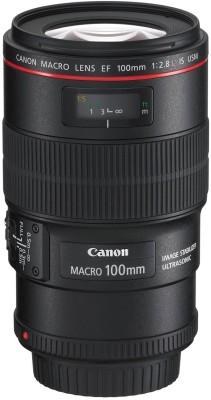Canon EF 100 mm f/2.8L Macro IS USM Lens  Lens(Black) 1