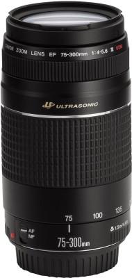 Canon EF 75 – 300 mm f/4-5.6 III USM Lens  Lens(Black)