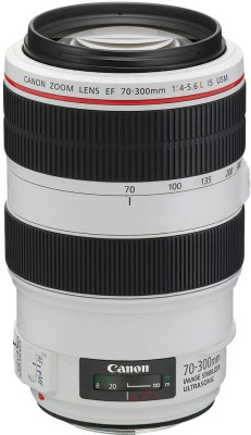 Canon EF 70 - 300 mm f/4-5.6L IS USM  Lens at flipkart
