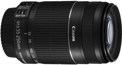 Canon EF-S 55-250mm f/4-5.6 IS II Lens Image