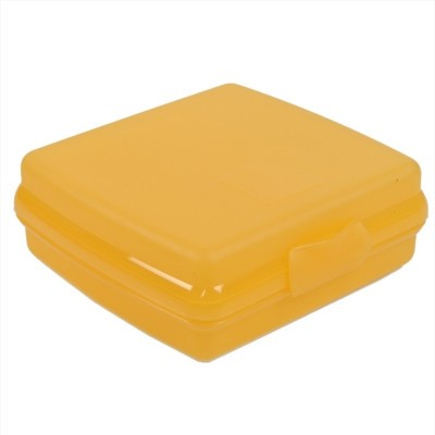 Tupperware Sandwich Keeper 1 Containers Lunch Box(300 ml)  available at flipkart for Rs.295