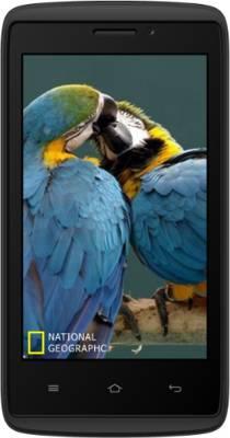Adcom ADCOM Kitkat A-40 Plus 3G Black (Black, 512 MB)