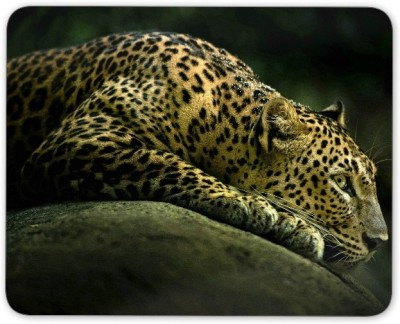 Digiclan Digiclan Multicolor Leopard Mouse Pad SZMP035 Mousepad Multocolor