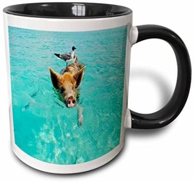 3dRose mug_214477_4 Print of Swimming Pig in Staniel Cay Bahamas Two Tone Black, 11 oz, Black/White Ceramic Mug(60 ml), Multicolor