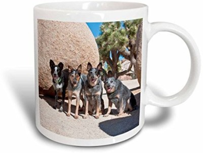 3dRose Four Australian Cattle Dogs US05 ZMU0108 Zandria Muench Beraldo Ceramic, 11-Ounce Ceramic Mug(60 ml) at flipkart
