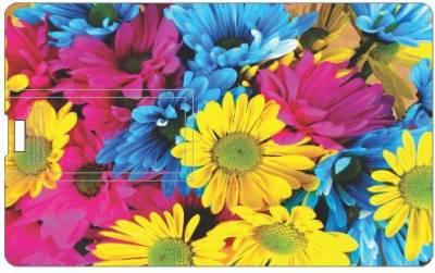 Design Worlds Colors DWPC162298 16 GB Pen Drive
