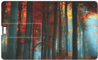 Printland Spring Time PC163393 16 GB Pen Drive(Multicolor)