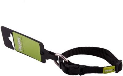 DogSpot Dog Everyday Collar(Small, Green)