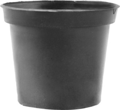 Amir Enterprises Plant Container(Plastic, External Height - 16 cm) at flipkart