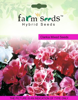 https://rukminim1.flixcart.com/image/400/400/plant-seed/c/f/t/farm-seeds-100-clarkia-mixed-2-packet-seeds-original-imaeped2cgrak4w4.jpeg?q=90