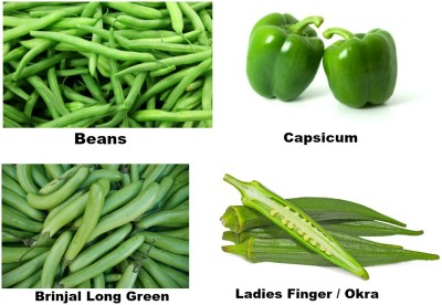Easy Gardening Beans, Capsicum, Brinjal Long Green, Okra / Ladies Finger F1 Hybrid Seed(20 per packet)