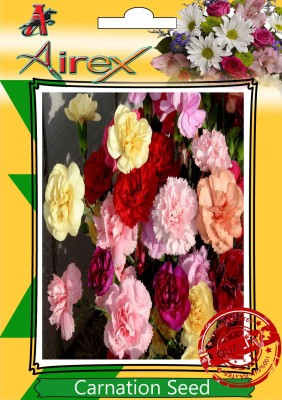 Airex Carnation Seed(15 per packet)