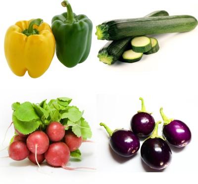 https://rukminim1.flixcart.com/image/400/400/plant-seed/k/d/g/farm-seeds-100-capsicum-zuccuni-radish-globe-brinjal-chu-chu-original-imaegmz8tjuzxvzy.jpeg?q=90
