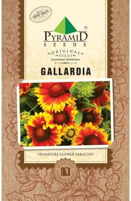 Pyramid blanket Seed(200 per packet)  available at flipkart for Rs.105